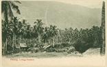 Picture of A Village Plantation