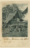 Picture of Native House in Jungle